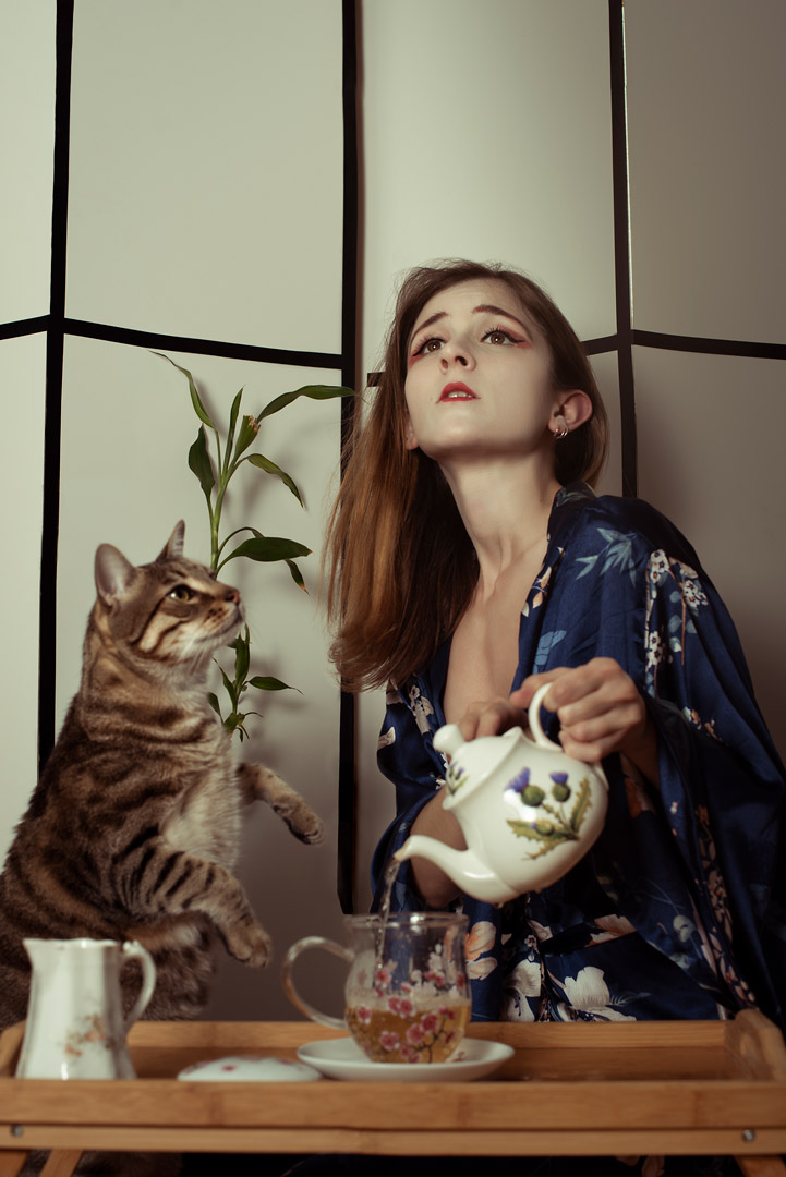 woman, cat, japanese, tale, cuento